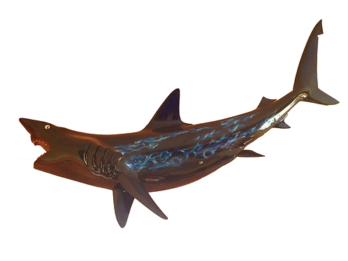 Black Tip Shark, Black with Tribal Blue Flames