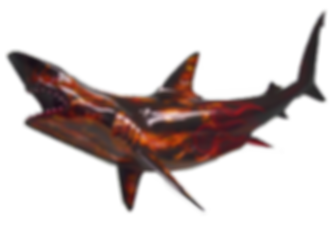 Fishmoun-shark-black-tip-fiberglss-half-mount-airbush-automotive-true-flames