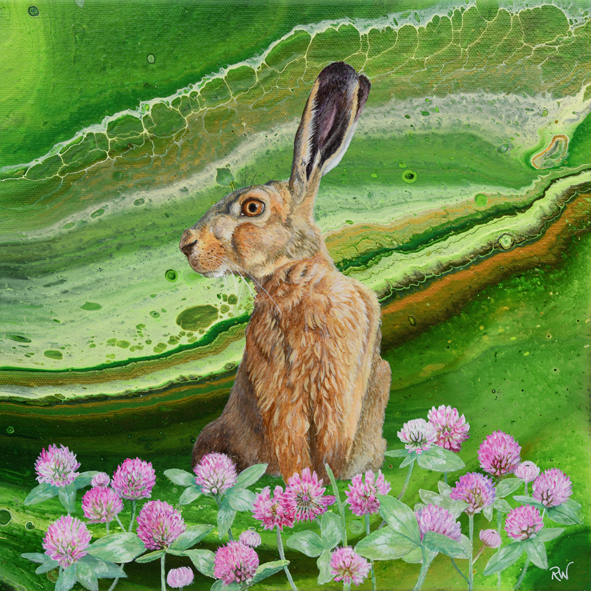 Hare in Clover
