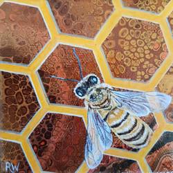 Bee Mini