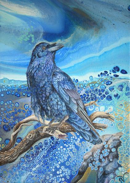 Storm Raven 063