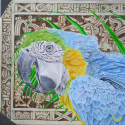 Blue Macaw (Detail)
