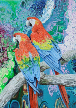 Red Macaws (Detail)
