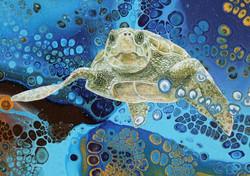 Green Turtle (Detail)