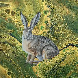 Golden Hare.jpg