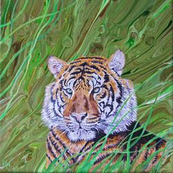 Grass Tiger