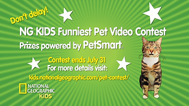 National Geographic Kids Commercial