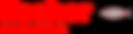 Fischer Consulting Logo