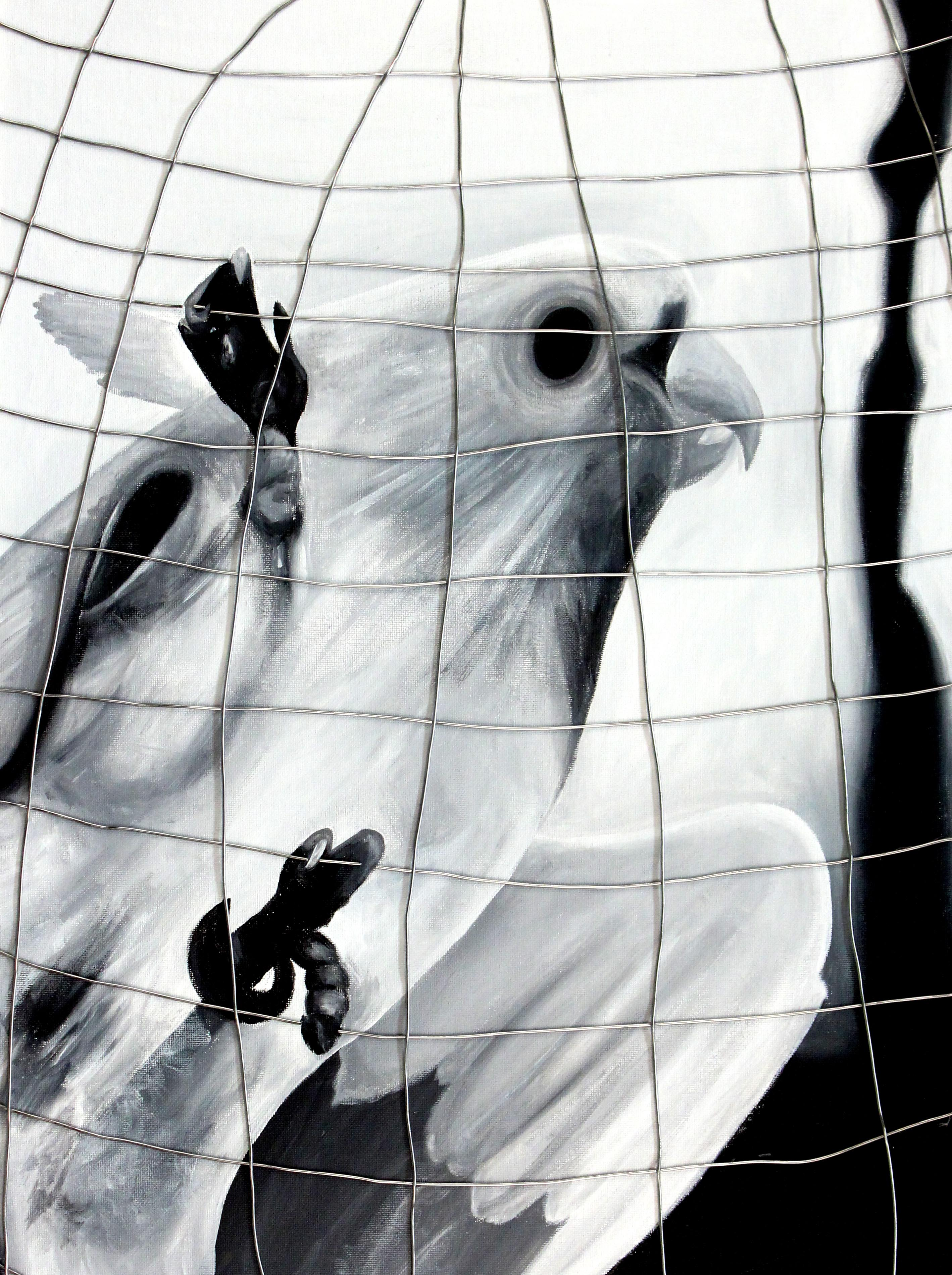 A Bird in a Cage