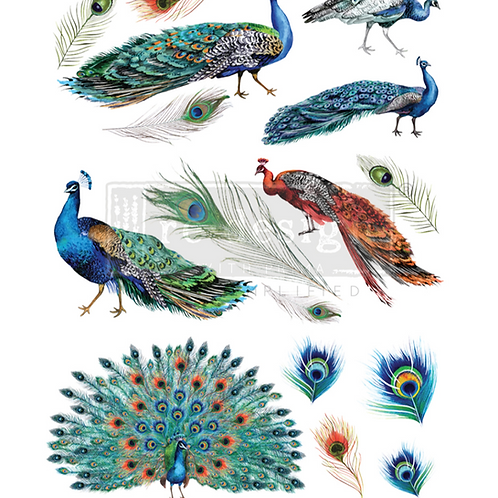 "Peacock Dreams (24"" x 32"") Transfer"