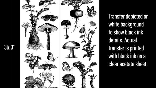 "Fungi Forest (24"" x 35"") Transfer"