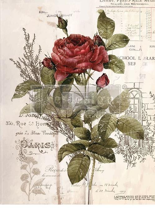 "Botanical Rose (24""x 30"") Transfer"
