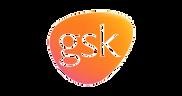 gsk_edited.png