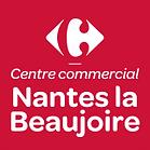 Nantes-la-Beaujoire-1-5.png