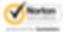 Norton-AntiVirus-Secure-Site