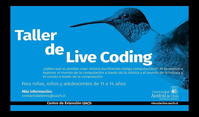 live-coding-valdivia-kids_edit.jpg