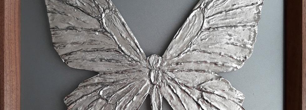 Бабочка платина