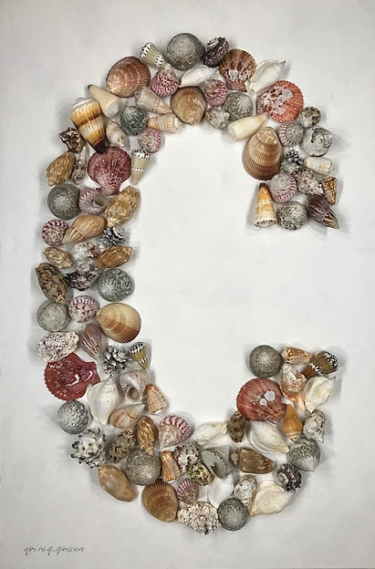 C Shells.jpg