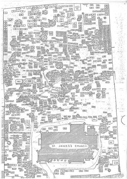 Site Map & Survey by FÁS