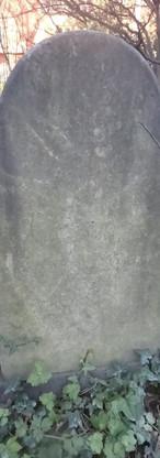 DU-SJMS-0499.jpg
