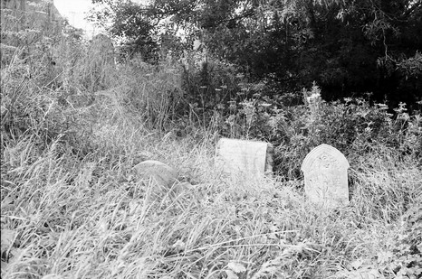 Headstones before clearing.