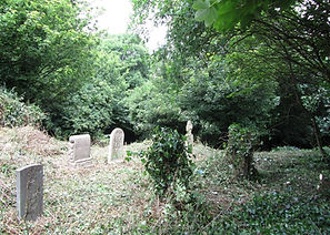 heritage_stjames_clearing_2-courtesy-of-