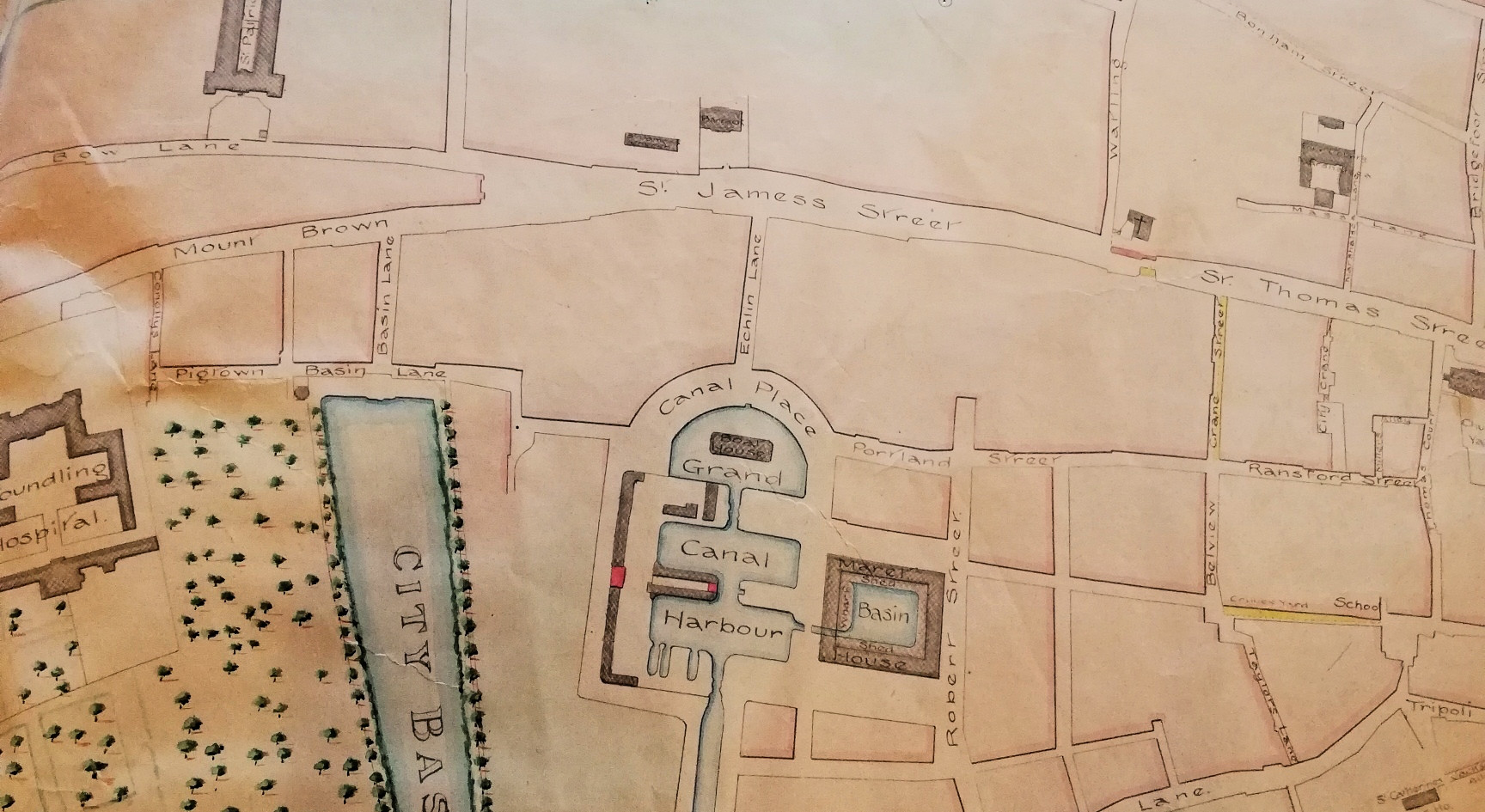 Portion of a Survey of the City of Dublin 1801
