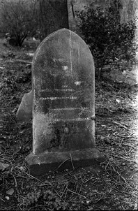 Headstone of W & Catherine Carter and their family