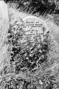 Headstone of Annie and Christopher Folkard before clearing.