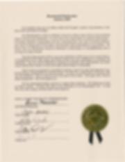 Bicentennial Declaration