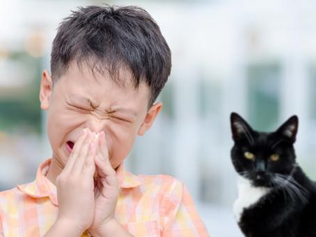 陳亦俊醫生 ~ 氣管敏感控制不好 日後可能演變哮喘