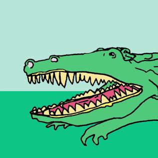 Alligator.mp4