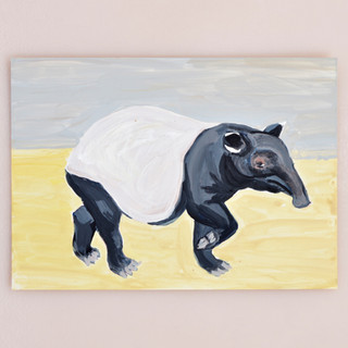 Don't Mind Me. Tapir series 2018