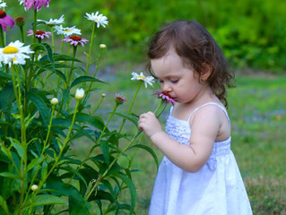 Did You Stop to Smell the Flowers?