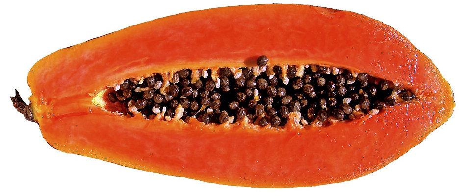 papaya-659210_1920_edited.jpg