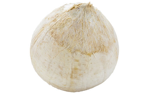 bigstock-Fresh-Coconut-Isolated-On-Whit-