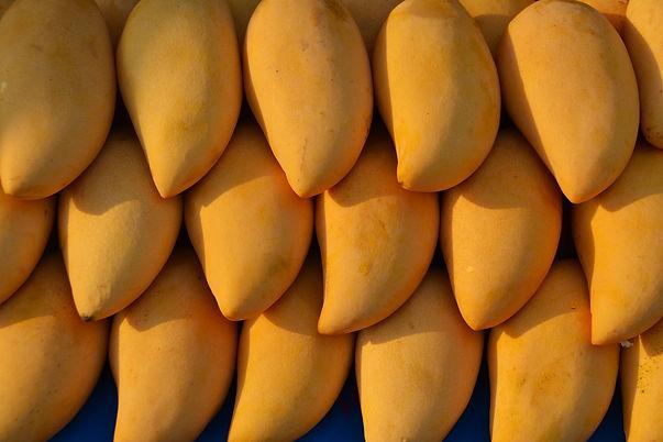 mangoes-1320111_1920.jpg