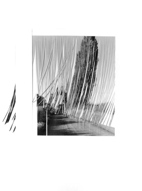 V14_2013#40_6_juliette_mogenet_incisions