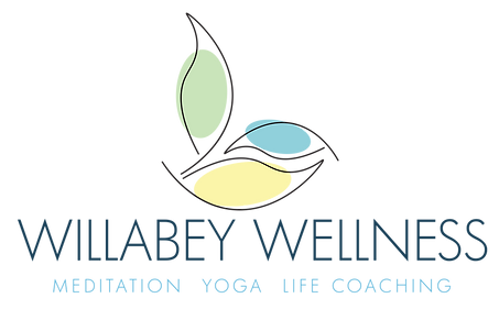 Willabey-Wellness-Logo.png