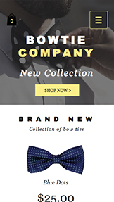 Fashion & Accessories website templates – Bow Tie Store