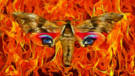 """Moth Into Flame"" Now Available For Purchase!"