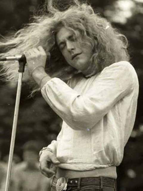 Robert Plant in the zone