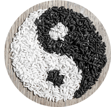 rice-yin-yang-PK5B884png.png