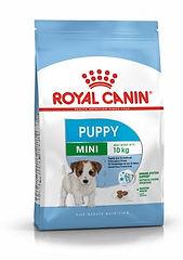 packshot-puppy-mini-shn17.jpg