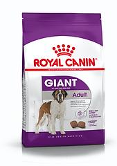 ad.gigante royal.png