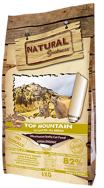 top-mountain (1).png
