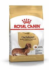 ad-dachshund-packshot-bhn18.jpg