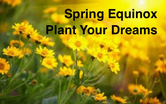 Spring Equinox: Plant New Possibilities