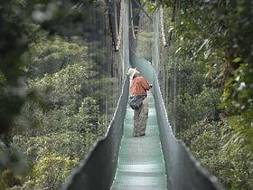 Hoteles de Monteverde, Costa Rica