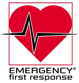 EFR-Logo04-red 6.jpg